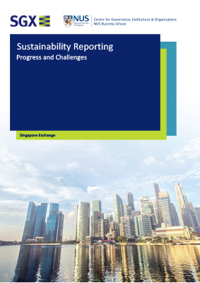 Sustainability Reporting: Progress and Challenges 2019