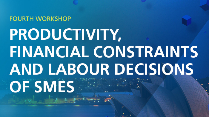 Fourth Workshop – Productivity, financial constraints and labour decisions of SMEs