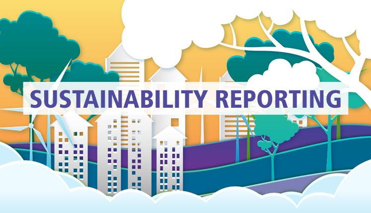 Sustainability Reporting – Progress and Challenges